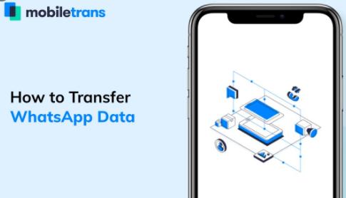 MobileTrans WhatsApp Data Backup