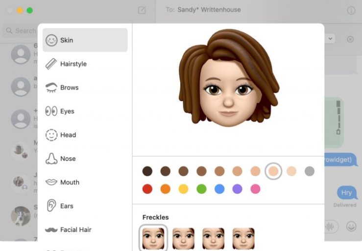 Use Memoji on macOS Big Sur Update