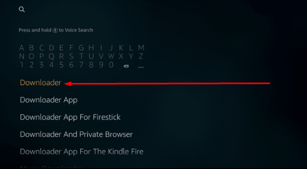 Search 'Downloader' on FireStick